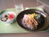 Hiyasi_soba_minigyuudon_set_gakusho
