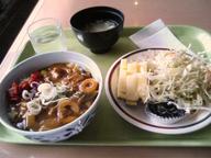 Wafuu_curry_set_gakushoku