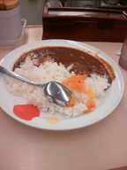 Matuya_curry_080430