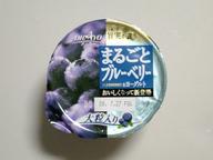 Marugoto_blue_berry_yogurt_080721