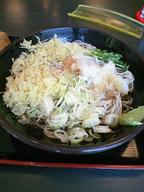 Hiyasi_tanuki_soba_100610