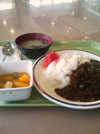Hayasi_rice_fruit_set_gakushoku