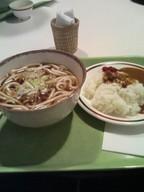 Kake_udon_half_curry_gakushoku