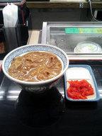 yosinoya_gyuu_curry_don0912